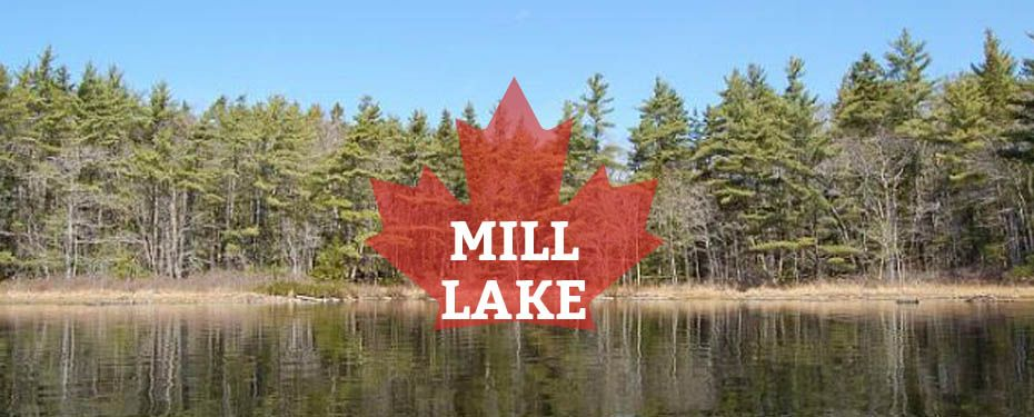 immobilien kanada mill lake