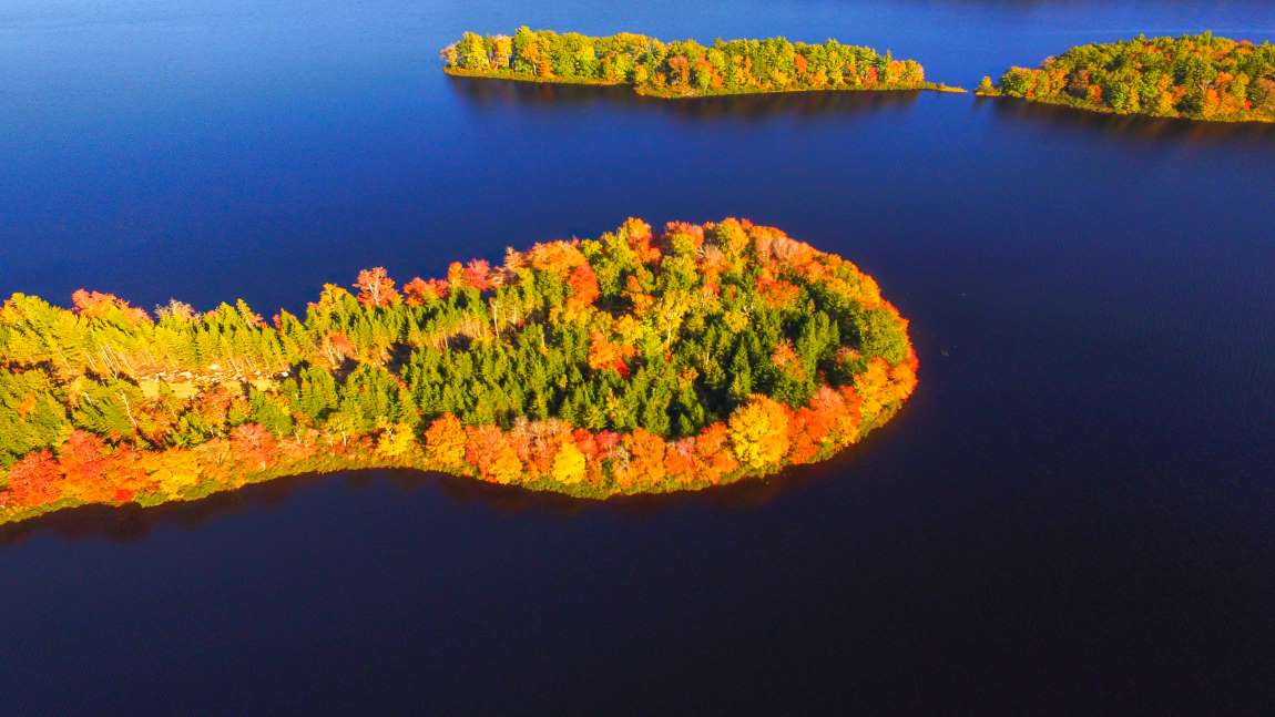 Selected plots on a peninsula on Wentworth Lake Nova Scotia Canada